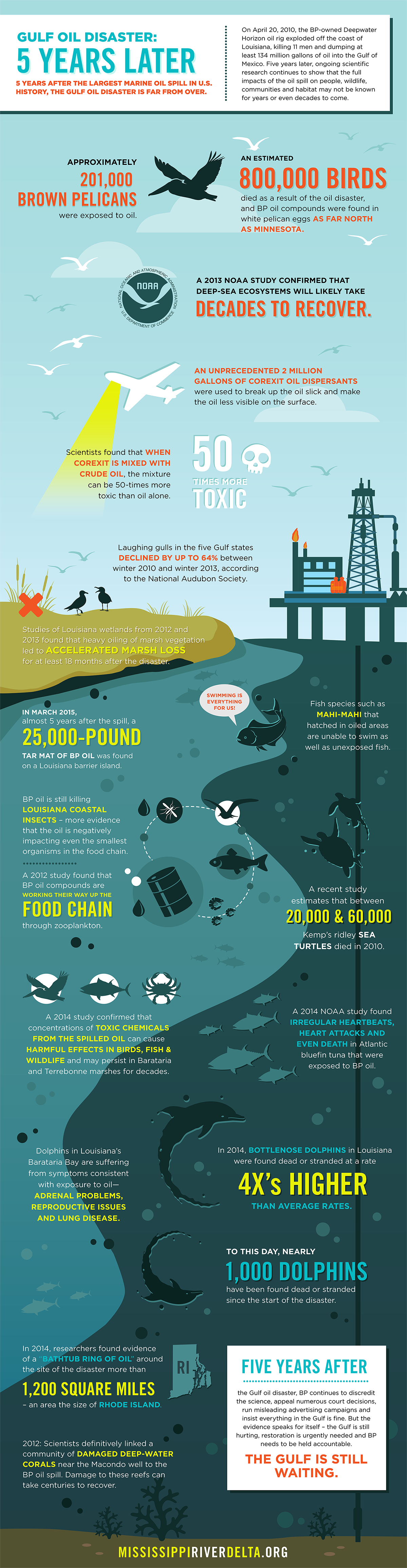 Gulf Oil Disaster: 5 Years Later Infographic